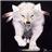 WhitewolfBroadfoot