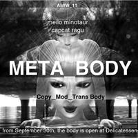 Meta_Body