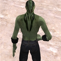 Avatar and Mesh work in SL