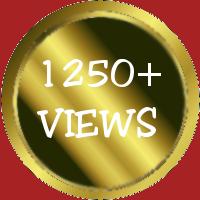 1250+ VIEWS