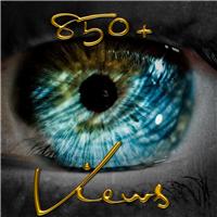 850+  Views