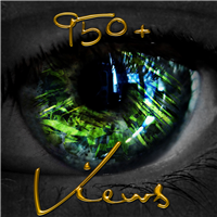 950+ Views