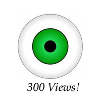 300+ Views, No Amount Limit