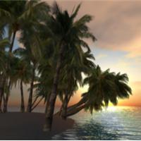 SL & OS Nature