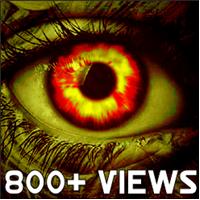 800+ Views